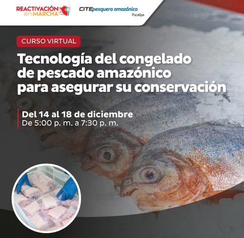 Tecnología del congelado de pescado amazónico para asegurar su conservación