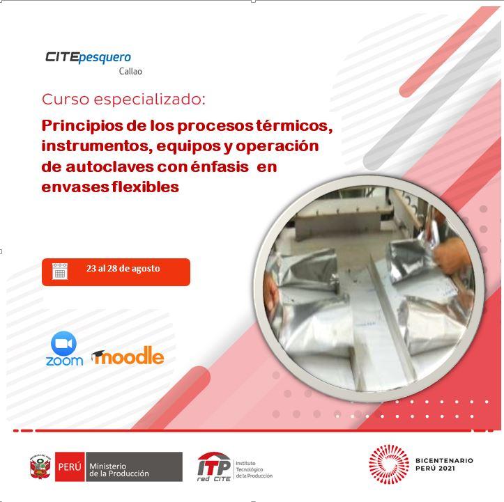 Principios de los procesos térmicos, instrumentos, equipos y operación de autoclaves con énfasis en envases flexibles